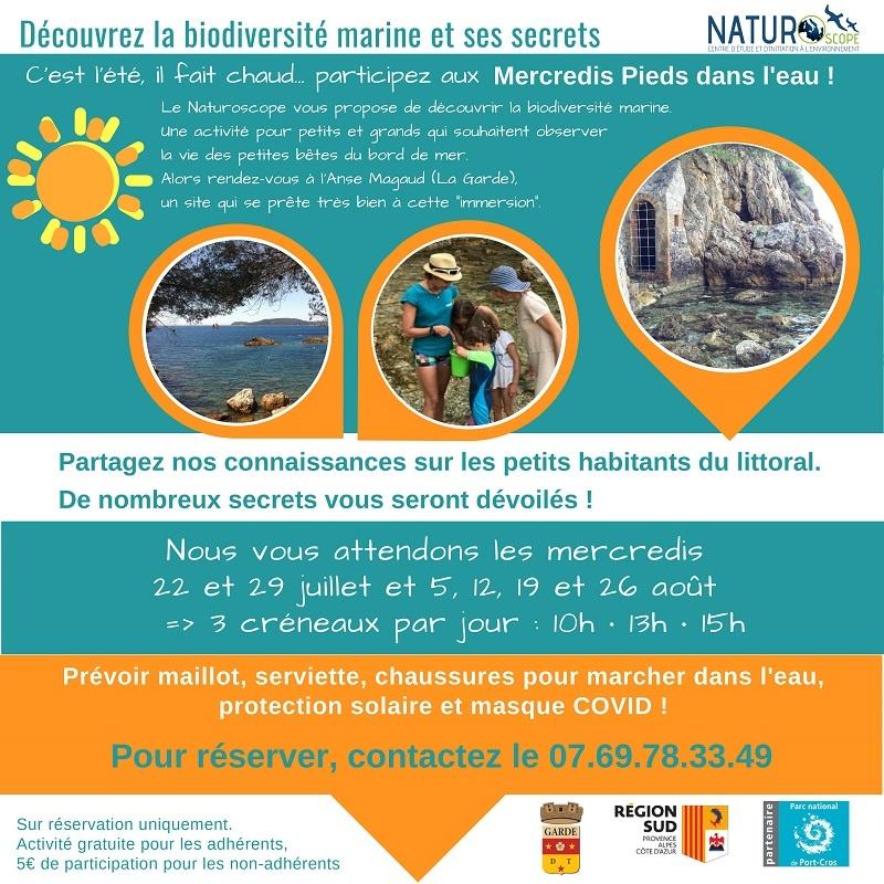 Découvrez la biodiversité marine et ses secrets